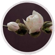 Magnolia Blossoms Round Beach Towel