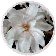 Magnolia Flower Round Beach Towel