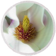 Magnolia Flowers Round Beach Towel