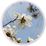 Magnolia Flowers White Magnolia Tree Art 2 Blue Sky Giclee Prints Baslee Troutman Round Beach Towel