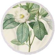 Magnolia Glauca Round Beach Towel