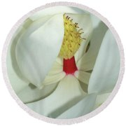 Magnolia Grace And Beauty Round Beach Towel