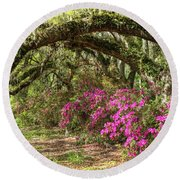 Magnolia Plantation's Live Oaks And Azaleas  Round Beach Towel