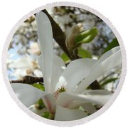 Magnolia Tree Flowers Art Prints White Magnolia Flower Round Beach Towel
