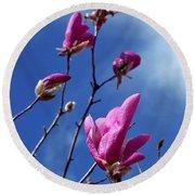 Magnolia Tulip Tree Round Beach Towel