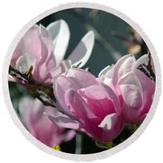 Magnolias Are Blooming Round Beach Towel