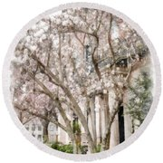 Magnolias In Back Bay Round Beach Towel