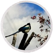 Magpie Round Beach Towel