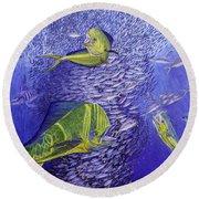 Mahi Mahi Original Oil Painting 24x30in Round Beach Towel by Manuel Lopez