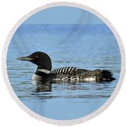 Maine Loon Round Beach Towel