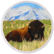 Majestic Buffalo  Round Beach Towel