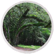 Majestic Fern Covered Oak Round Beach Towel