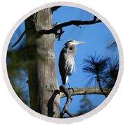 Majestic Great Blue Heron 1 Round Beach Towel