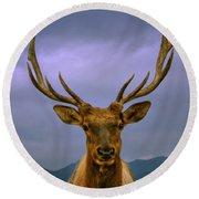 Majestic Elk Round Beach Towel