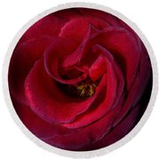 Majestic Rose Round Beach Towel
