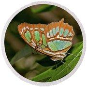 Malachite Butterfly Round Beach Towel