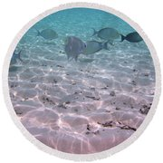 Maldives School Of Tropical Fish Round Beach Towel