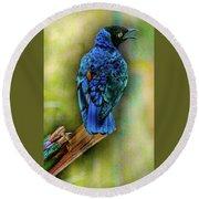 Male Fairy Bluebird Round Beach Towel