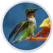 Male Hummingbird Spreading Wings Round Beach Towel