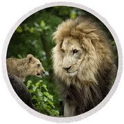 Male Lion And Cub Round Beach Towel