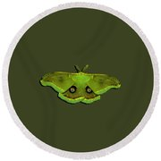 Male Moth Green And Yellow .png Round Beach Towel