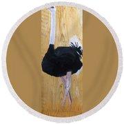 Male Ostrich On Wood Round Beach Towel