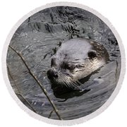 Male River Otter Round Beach Towel