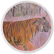 Adult Male Tiger Of India Striding At Sunset  Round Beach Towel