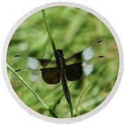 Male Widow Skimmer Dragonfly #4 Round Beach Towel