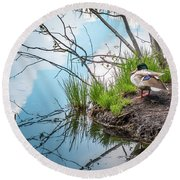 Mallard At Silver Lake Round Beach Towel