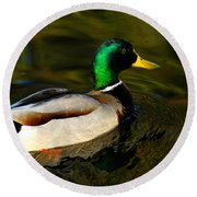 Mallard Green Round Beach Towel