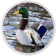 Mallard Moment Round Beach Towel