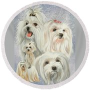 Maltese Collage Round Beach Towel