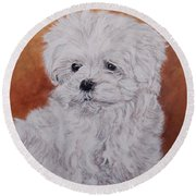 Maltese Puppy Round Beach Towel