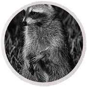 Mama Raccoon Round Beach Towel