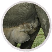 Mama's Milk Bar Round Beach Towel