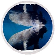 Manatee Mirror Image Round Beach Towel
