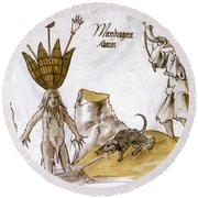 Mandrake And Herbalist Round Beach Towel