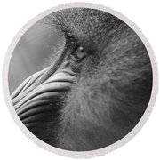 Mandrill Posing For The Portrait Round Beach Towel