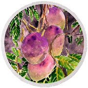 Mango Tree Fruit Round Beach Towel
