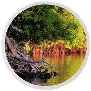 Mangroves Of Roatan Round Beach Towel