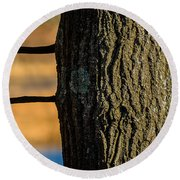 The Many Lines Of Nature Round Beach Towel