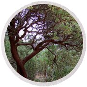 Manzanita Tree By The Road Round Beach Towel
