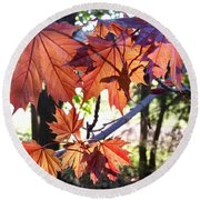 Maple Round Beach Towel