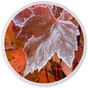 Maple Frost  Round Beach Towel
