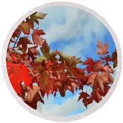 Maple Leaves Against The Sky  Round Beach Towel