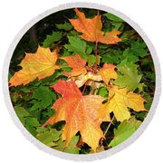 Maple Mania 10 Round Beach Towel
