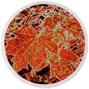 Maple Mania 11 Round Beach Towel