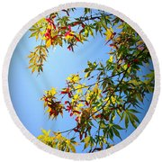 Maple Seeds In September Round Beach Towel