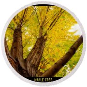 Maple Tree Poster Round Beach Towel
